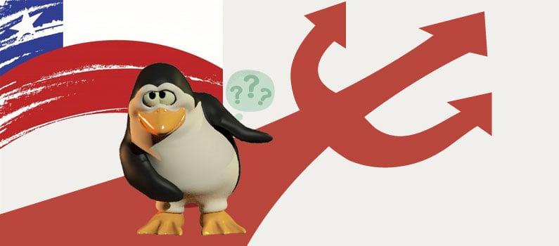 El pinguino de linux nos muestra el camino